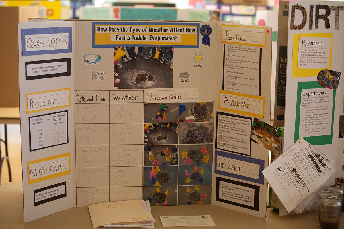 already finished science fair projects